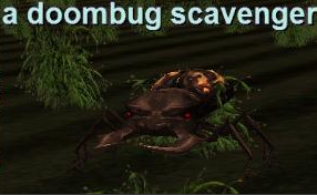 beetle hunting for everquest platinum